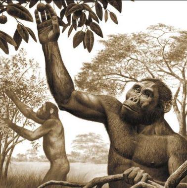 prehistorics