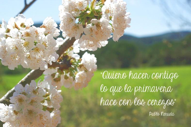 benvinguda primavera 3