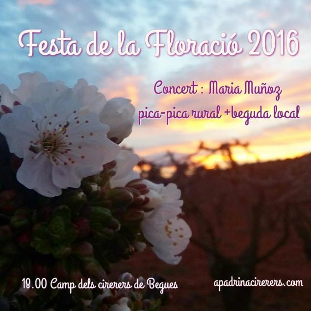 Festa de la floració